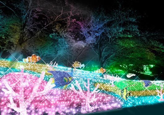 キラメキの冬!関東最大600万球の光の祭典『さがみ湖イルミリオン』と人気の桔梗信玄餅詰め放題&ランチビュッフェ♪