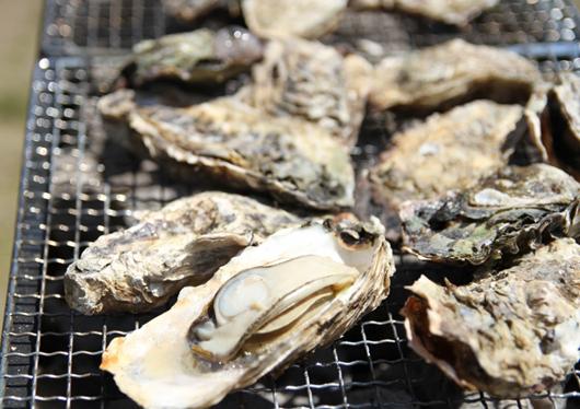 牡蠣の季節がやってきた♪牡蠣の炭火焼に牡蠣ごはんも食べ放題!いちご狩り&こんにゃくパーク工場見学!を楽しむ日帰りバスツアー