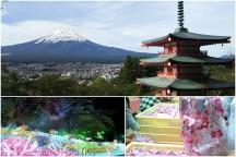 感動絶景スポットと人気の桔梗信玄餅詰め放題! 富士の絶景《新倉山浅間公園》と関東最大600万球の光の祭典《さがみ湖イルミリオン》