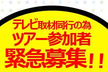 テレビ取材同行の為《特別価格で緊急募集!》