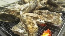 あつまれ牡蠣好き!イチゴ好き!カキ小屋BBQであつあつカキ食べ放題!&シーズン到来いちご狩り&体験いっぱい<花摘み・お米すくい・調味料作り!>