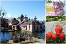 感動に出会える湖畔のミュージアム『河口湖オルゴールの森』と行列の出来る『桔梗信玄餅詰め放題』&食べ放題のビュッフェランチ♪