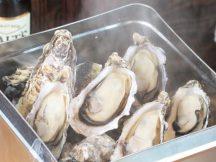 【静岡】秋に楽しむ旬の味覚!プリップリでジューシーな牡蠣のガンガン焼き食べ放題!神秘のブルー「柿田川」公園散策&旬のさつまいも狩り&2キロお持ち帰り♪