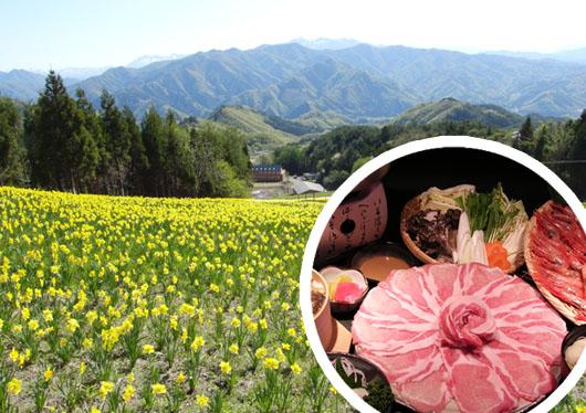 100万株の水仙が咲き誇る天空の花園へ!すいせん祭りに吹割の滝散策と豚しゃぶ・甘えび食べ放題&いちご狩り!