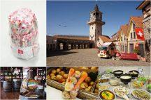 やまなし満腹満足放題ツアー!ハイジの村スイス料理ビュッフェ食べ放題&桔梗信玄餅&野菜の詰め放題♪