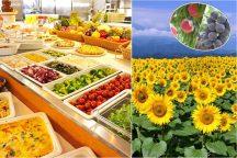 夏満開!明野ひまわり畑<サンフラワーフェス>とイタリン&高原野菜のランチバイキング・旬のフルーツ狩りで大満足♪