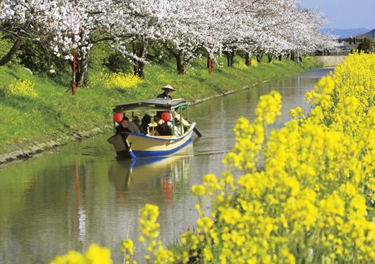【滋賀】水郷めぐりと近江牛ステーキの夕食付