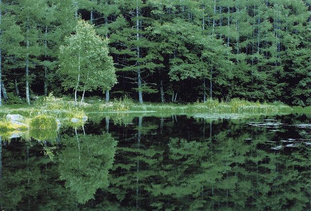 フォトジェニックな風景 神秘の池・御射鹿池 日帰りバスツアー