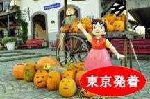 <東京発>Trick or Treat(トリックオアトリート)!秋の花咲く庭園『ハイジの村ハロウィン祭り』とぶどう狩り&大人気!桔梗信玄餅の詰め放題♪を楽しむバスツアー