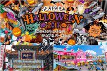 横浜で過ごす秋休み!横浜中華街散策と八景島シーパラダイス『ハロウィンナイト 花火シンフォニア』&BBQ食べ放題ディナー♪