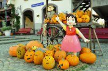 Trick or Treat(トリックオアトリート)!秋の花咲く庭園『ハイジの村ハロウィン祭り』とぶどう狩り&大人気!桔梗信玄餅の詰め放題♪