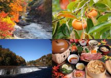 上州紅葉狩り!諏訪峡・吹割の滝の紅葉&上州牛ステーキと松茸わっぱ膳の昼食にこだわりの柿狩り♪
