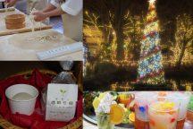 やまなし体験満載!&クリスマスイルミネーション♪ ほうとう麺打ち・キャンドル作り・酒粕石鹸作り・フルーツパフェ作り体験!