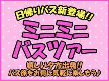 《ミニミニバスツアー》【千葉】夕方出発!東京ドイツ村イルミネーション《関東三大イルミネーション》