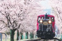 嵐山嵯峨野トロッコ列車・清水寺・伏見稲荷大社満喫ツアー《昼食付》