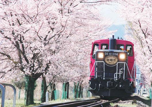 嵐山嵯峨野トロッコ列車・清水寺・伏見稲荷大社満喫ツアー