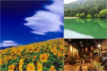 フォトジェニックやまなし♪ グリーンに染まる神秘の湖と黄色の絶景『明野ひまわり』&隠れ家ガレージレストランでランチビュッフェ