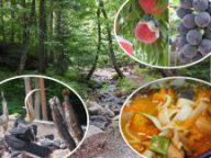 雲上の別天地!富士山五合目散策と田舎で遊ぼう《つめたーい川で魚のつかみ取り&トウモロコシの収穫体験》旬のフルーツ狩り♪