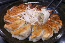 10周年記念!浜松餃子食べ放題とふじのくに茶の都ミュージアム 日帰りバスツアー
