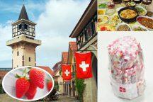 ハイジの村スイス&甲州郷土料理ビュッフェと旬のいちご狩り園内食べ放題&『桔梗信玄餅の詰め放題』
