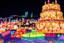 シーズン開幕!体験型イルミネーション『グランイルミ』と日本一遅い紅葉!熱海梅園の散策&ヒルトン小田原リゾート&スパにてホテルランチブッフェ!