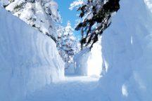 新穂高ロープウェイとひらゆの森・雪見温泉を満喫・飛騨ポーク&飛騨サーモンしゃぶしゃぶ膳の昼食付き日帰りバスツアー