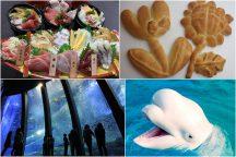 春休み♪世界にひとつだけ『オリジナルパン作り』体験&海の生き物たちの楽園『八景島シーパラダイス』・三崎マグロ含む海鮮ネタ丼食べ放題ランチ付♪