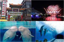 GW横浜で遊ぼう!みなと街ヨコハマ・中華街ぶらり散策と八景島シーパラダイス花火シンフォニア♪