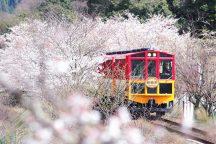 嵐山嵯峨野トロッコ列車・清水寺・伏見稲荷大社満喫ツアー《昼食なし》
