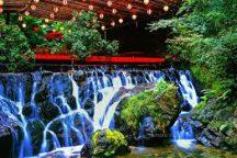 【京都】夏の風物詩・貴船の川床料理 日帰りバスツアー