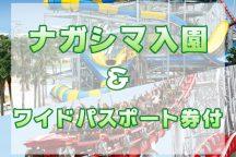 ナガシマスパーランド 入園&ワイドパスポート券付!