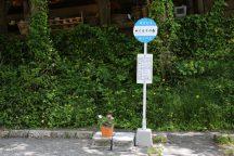 浜松餃子食べ放題&ぬくもりの森と日光「松月氷室」天然氷のかき氷 ジブリ映画に出てきそうなぬくもりの森に立ち寄る日帰りバスツアー