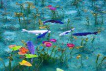 【昼食付】美しすぎるモネの池と日本三名泉・下呂温泉!小川屋・美肌の湯!入浴入浴とリコピン効果も期待できるトマト狩りでダブル美白!&小川屋のランチバイキング付き日帰りバスツアー