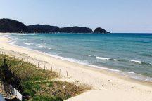 【選べる海の幸の昼食付】名古屋から一番近い島!魚介類の宝庫・日間賀島で選べる海の幸ランチとひまわり摘み体験日帰りバスツアー