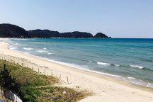 ふぐ&たこ料理の昼食付!高速船で名古屋から一番近い島・日間賀島へ行く日帰りバスツアー岩谷寺立ち寄りとミニぜんざい付き