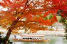 【宇治・屋形船の昼食付】秋の京都で紅葉を楽しもう♪『京の秋てんこもり』日帰りバスツアー