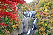 秋のおとずれ!茨城の紅葉名所を巡る!日本三大名瀑『袋田の滝』と絶景の紅葉散策『花貫渓谷』!吊り橋から見る色鮮やかな景色『竜神大吊橋』♪