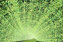 なばなの里イルミネーション見学(ナガシマ入園&乗物乗り放題券&ベゴニアガーデン入館券付)