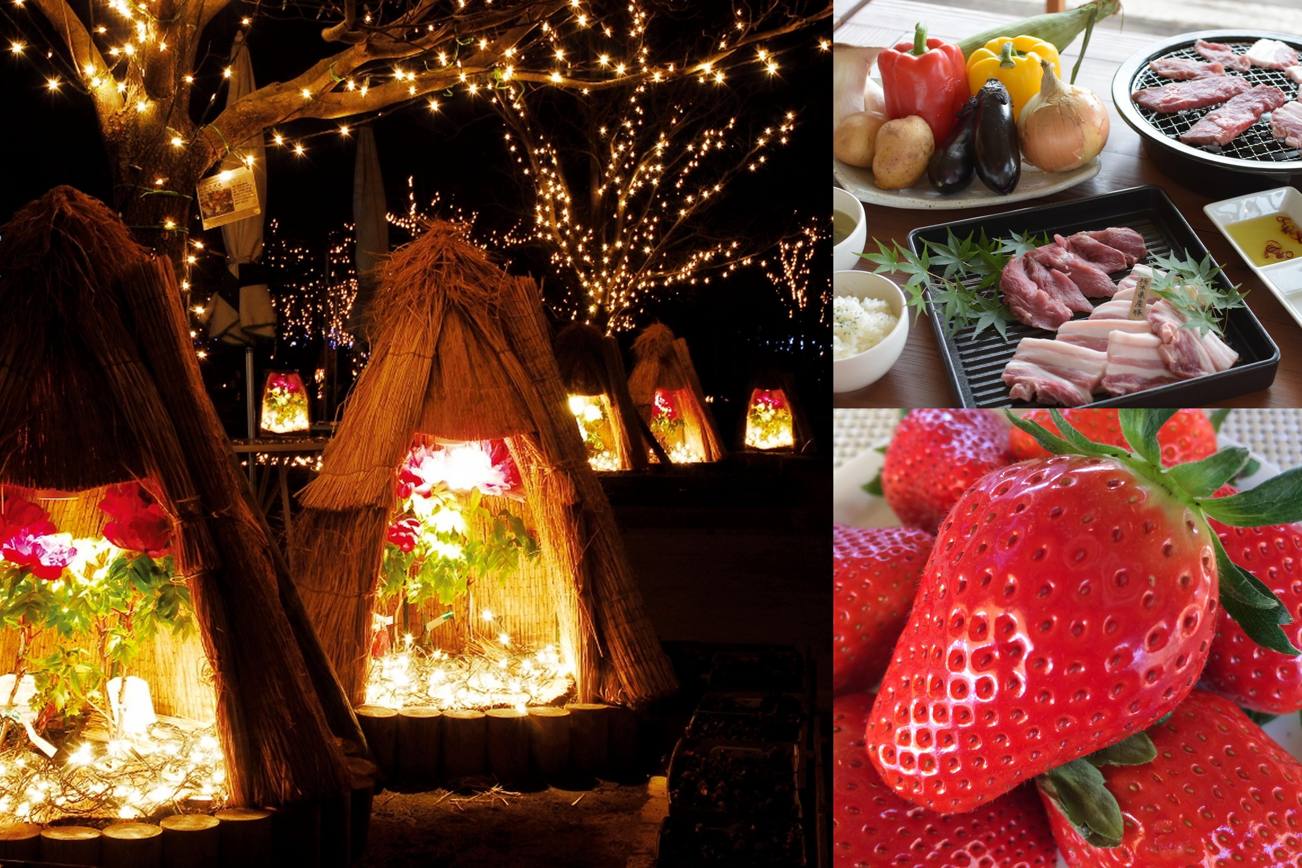 【栃木】魅力ぎっしり!《スカイベリー狩り食べ放題》&あしかがフラワーパーク《イルミネーション》&世界遺産《日光散策》&新オープンレストランでブランド豚¨やんちゃ豚¨肉食べ放題!