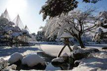 近江町市場で自由昼食!冬の金沢兼六園・風情あふれるひがし茶屋街散策日帰りバスツアー