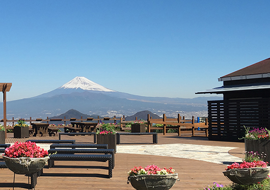 富士見テラス