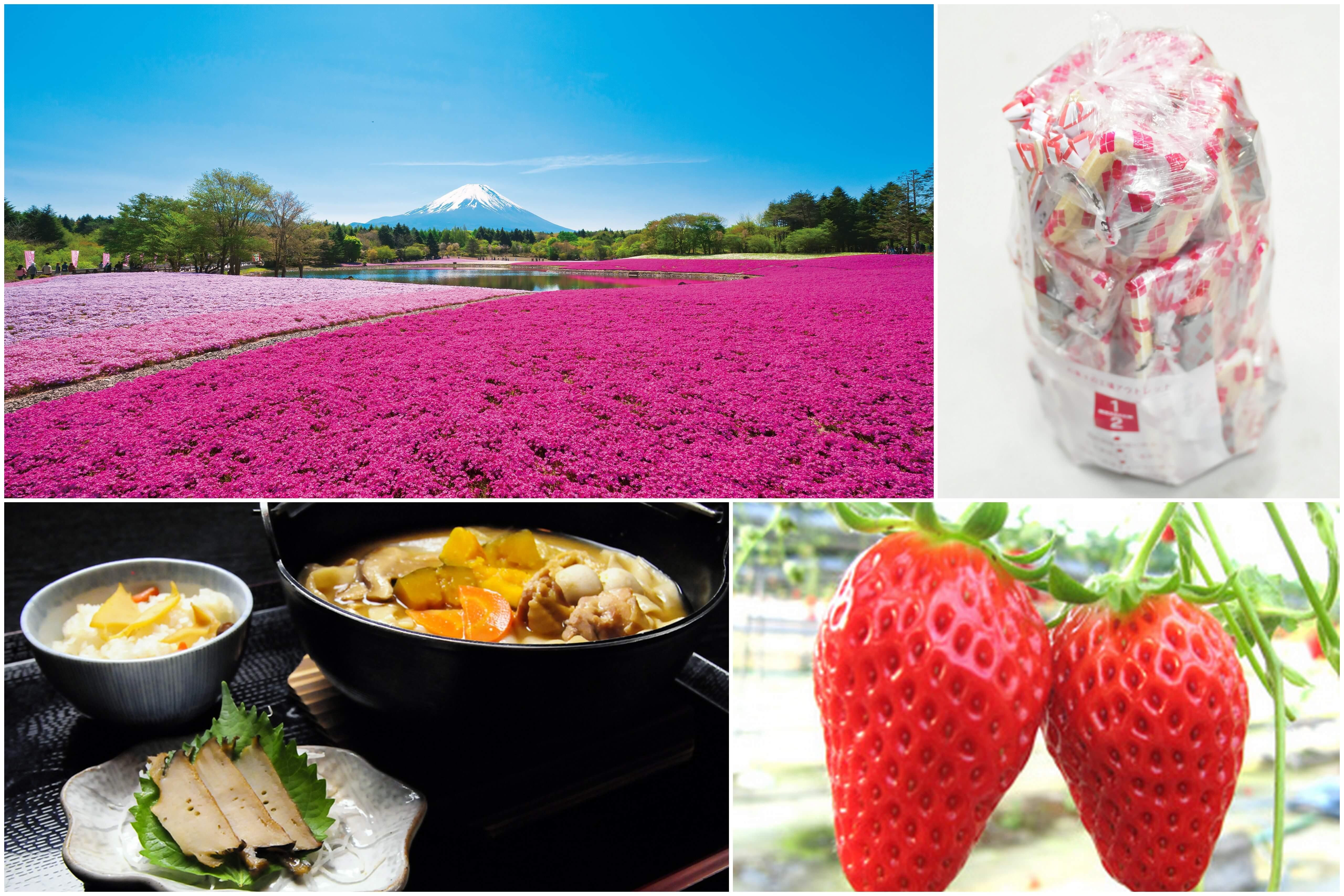 やまなしの春!『富士芝桜まつり』と人気の桔梗信玄餅詰め放題!シーズンラスト完熟いちご狩り