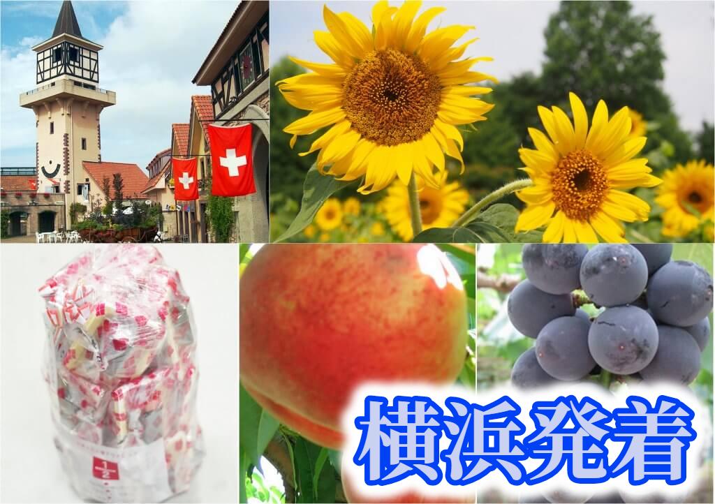 <横浜発>夏の花咲くハイジの村&ハーブ庭園散策!《大人気》桔梗信玄餅の詰め放題に旬のフルーツ狩りも楽しもう!