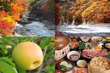 上州満喫の秋!諏訪峡・吹割の滝の紅葉&天空の城下町・上州沼田で食べ歩き!赤城牛ステーキと松茸わっぱ膳に希少なりんご!≪ぐんま名月≫狩り食べ放題もお楽しみ♪