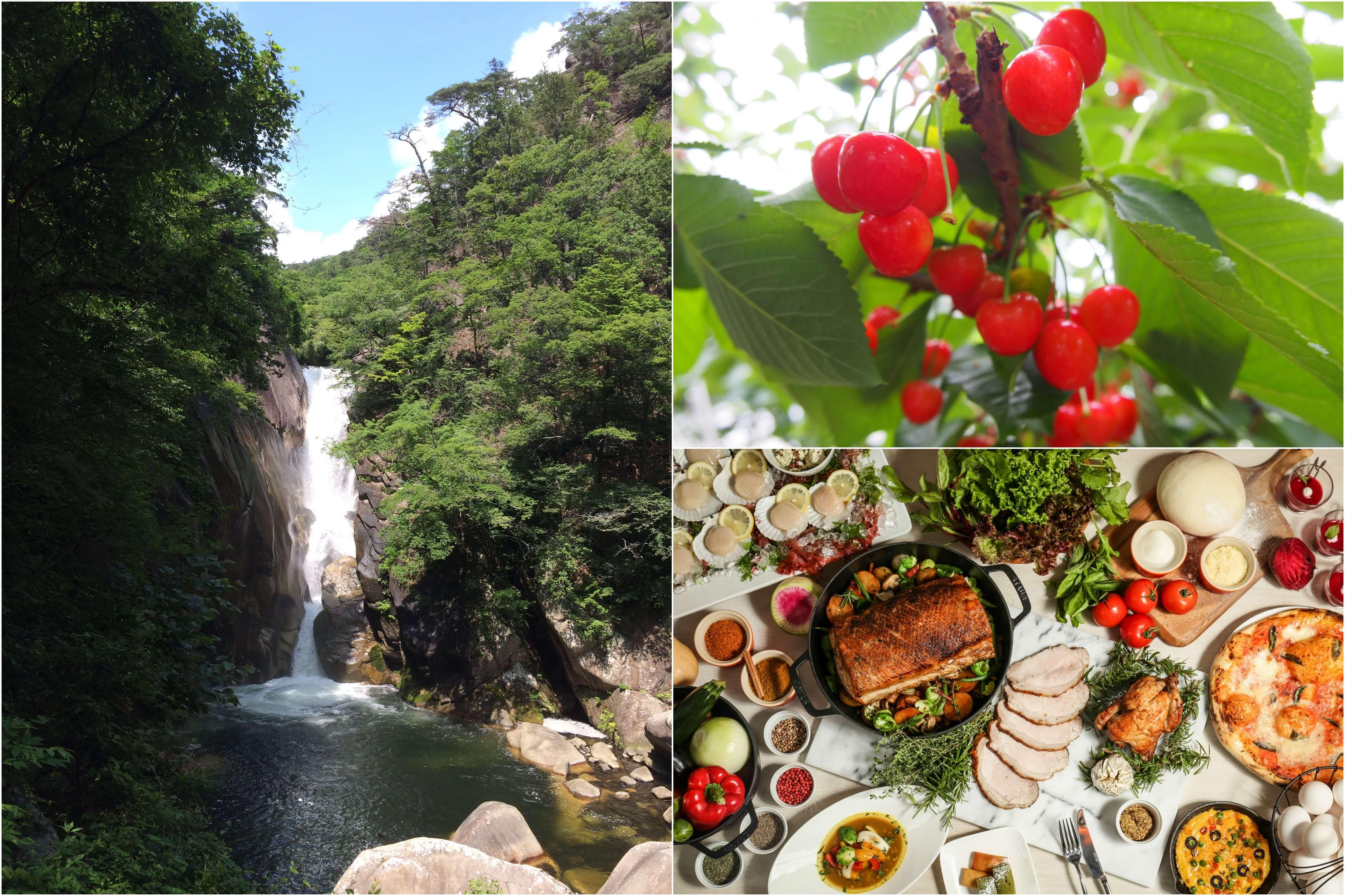 初夏を味わう♪ 旬のさくらんぼ狩り食べ放題と新緑の『昇仙峡』散策&<初登場>フレンチレストランでランチビュッフェ♪