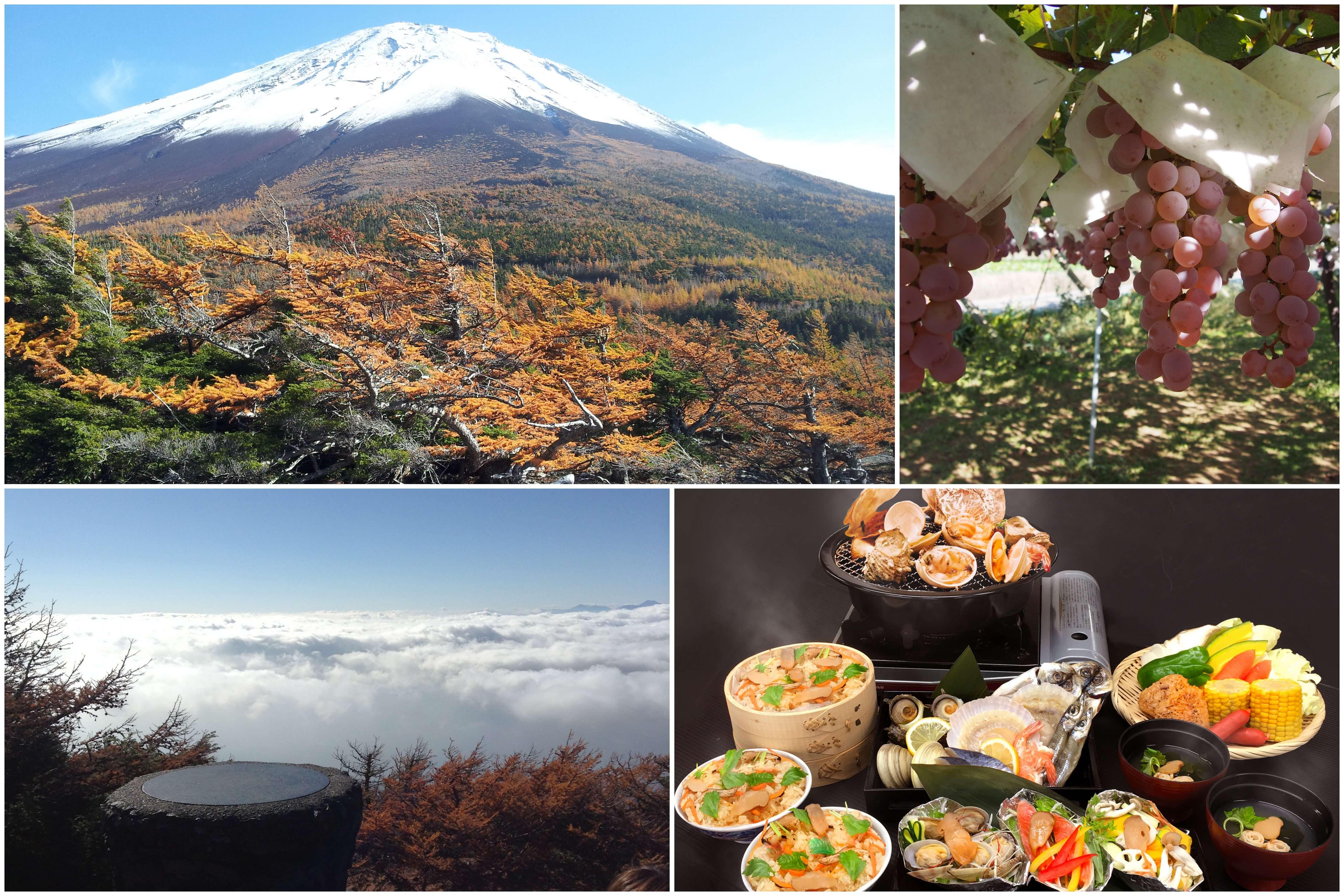 富士山紅葉ドライブ 富士山奥庭の絶景紅葉と雲上の五合目散策・松茸料理&海鮮浜焼き食べ放題ランチに秋の味覚ぶどう狩り