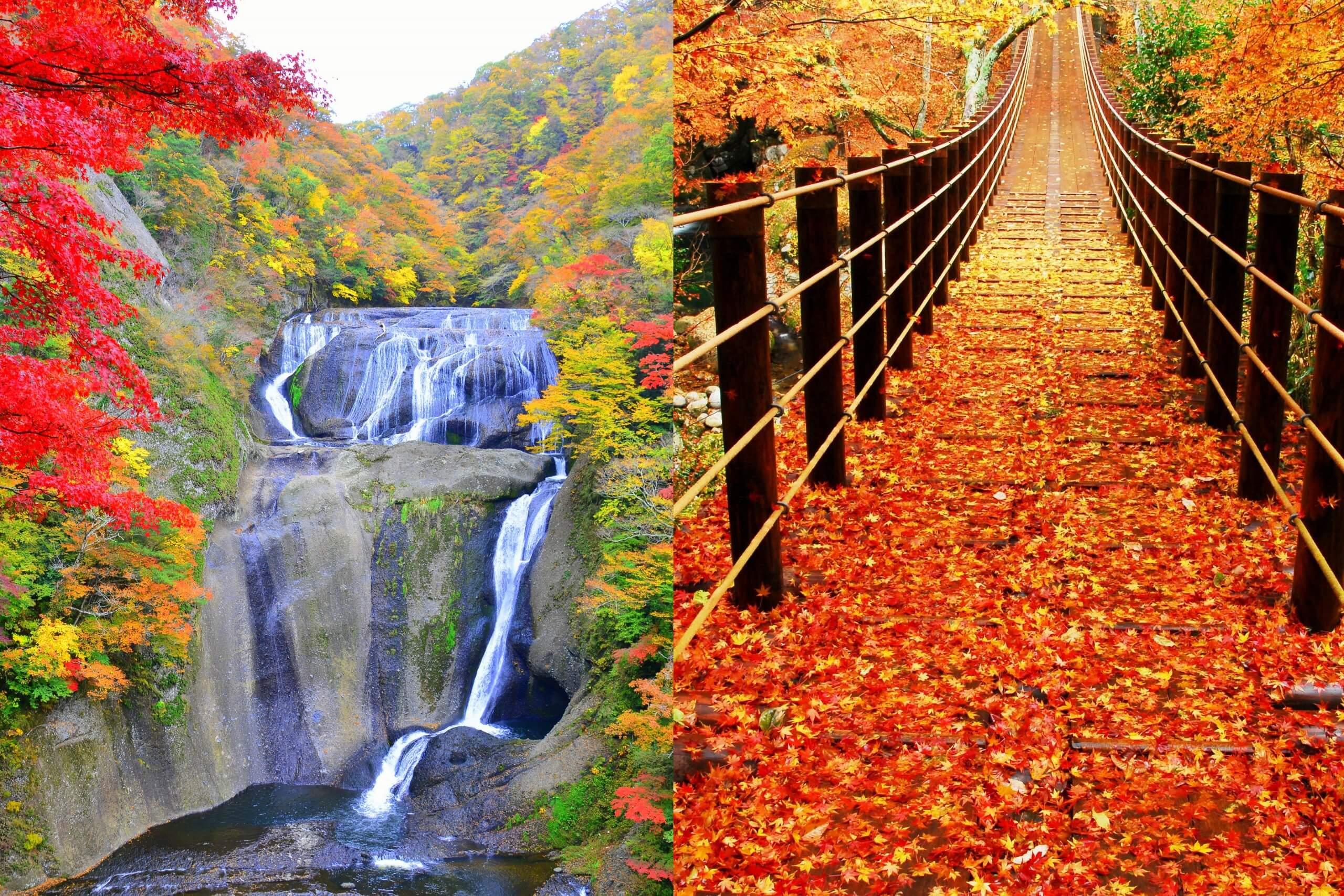 秋のおとずれ!茨城の紅葉名所を巡る!日本三大名瀑「袋田の滝」×絶景の紅葉散策「花貫渓谷」