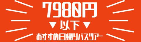 【7,980円以下】おすすめ日帰りバスツアー特集