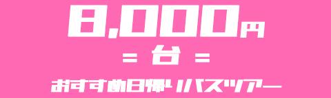 【8,000円台】でいく!おすすめ日帰りバスツアー特集