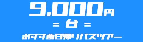 【9,000円台】でいく!おすすめ日帰りバスツアー特集